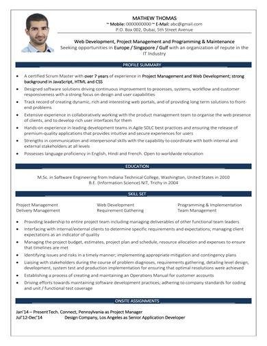 two page web developer resume