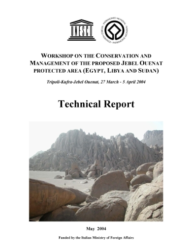 unesco technical report