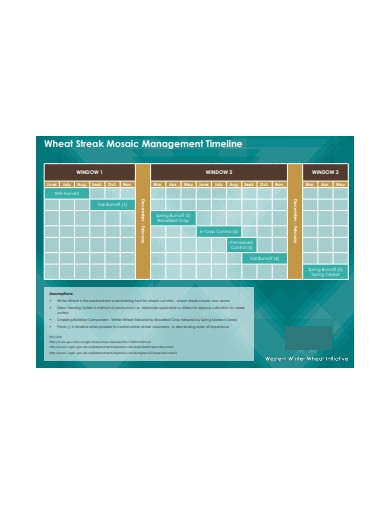 wheat streak mosaic management timeline