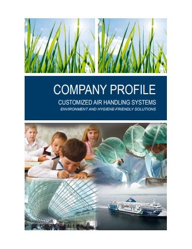 company profile in pdf