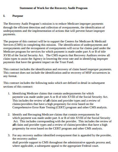audit program statement of work
