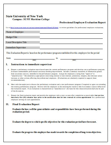 employee evaluation report in doc