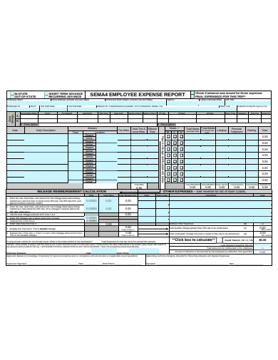 employee expense report1