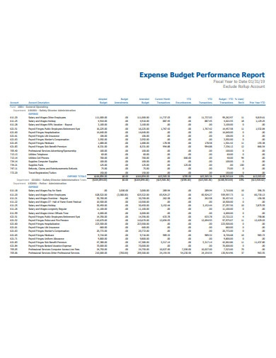 expense budget performance report