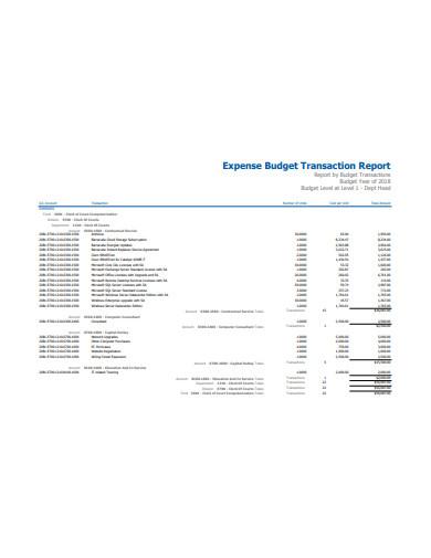 expense budget transaction report