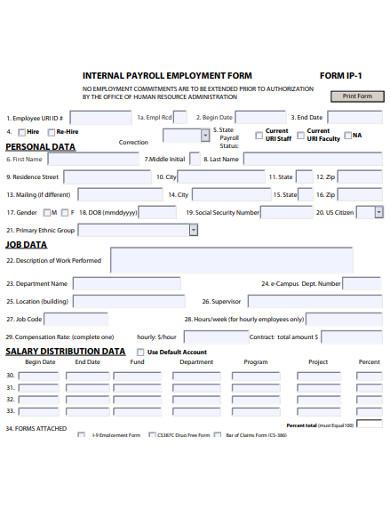 internal payroll employment form example