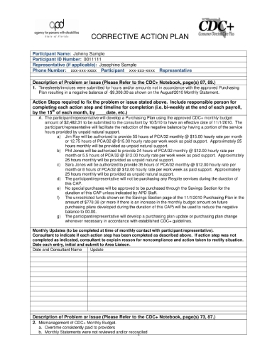 persons with disability corrective action plan
