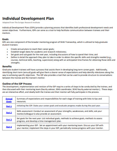 21+ Individual Development Plan Examples & Samples - PDF, Word