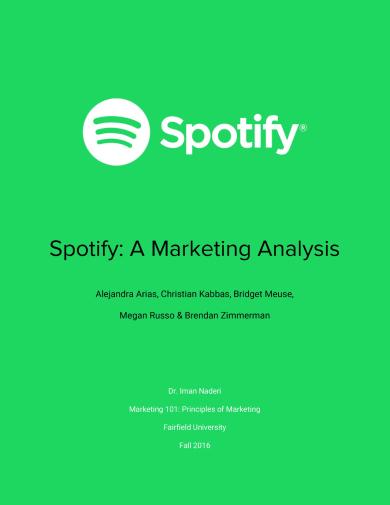 spotify target market analysis