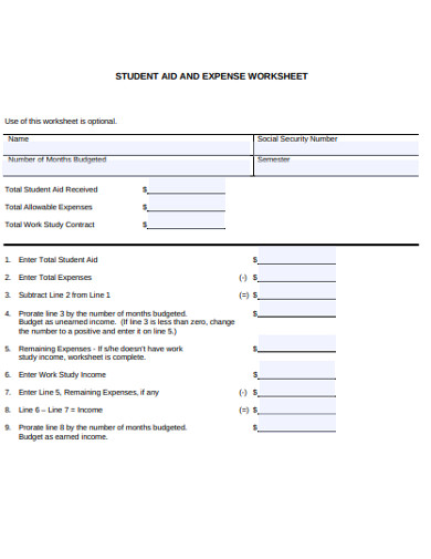 student aid and expenses worksheet example