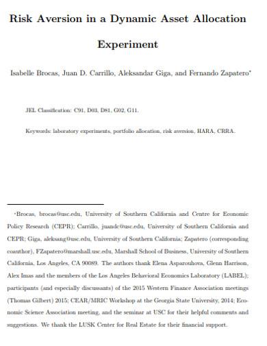 asset allocation experiment
