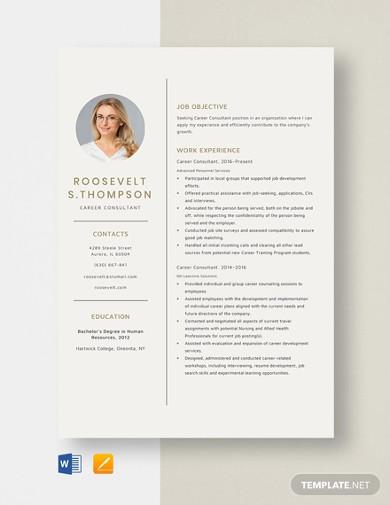 career consultant resume template