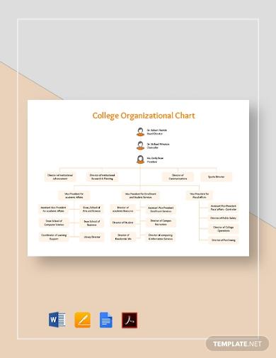 college organizational chart