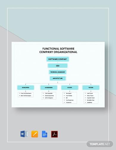 functional software company organizational chart