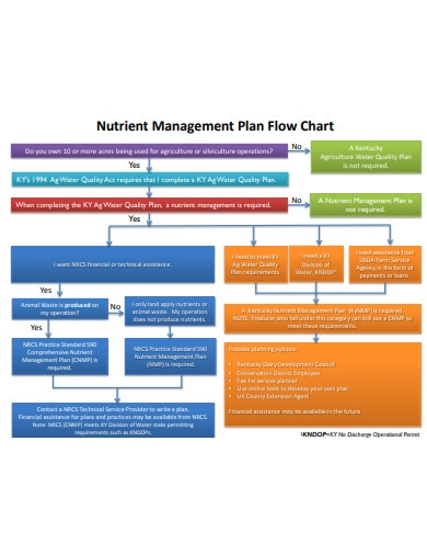 management plan flow chart