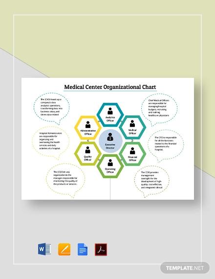 medical center organizational chart template