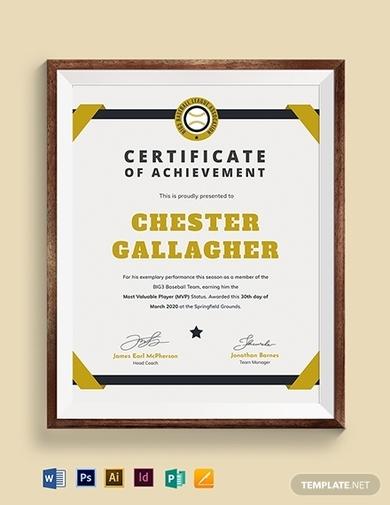 modern baseball award certificate