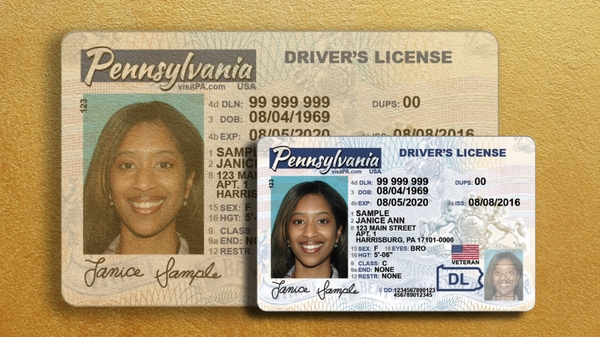 modern drivers license id card