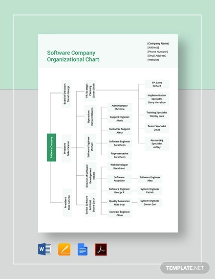 software company organizational chart template1