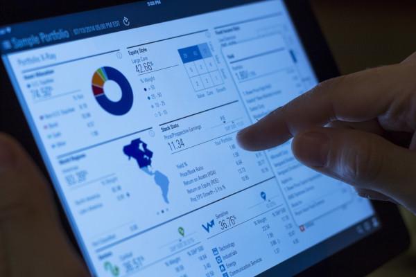 types of portfolio investment