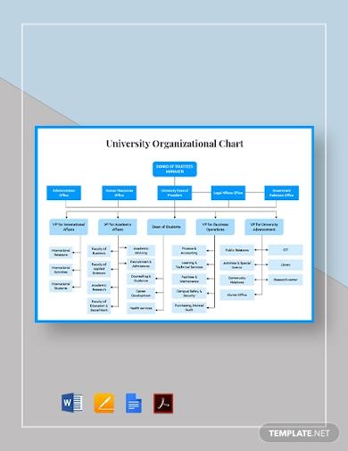 university organizational chart