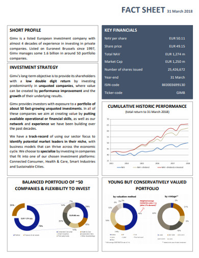 balanced investment stratregy fact sheet