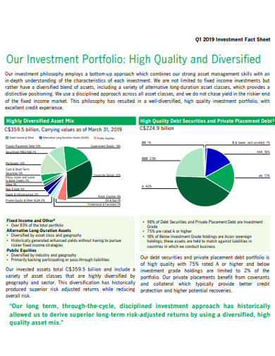 diversified invesmtnet fact sheet example