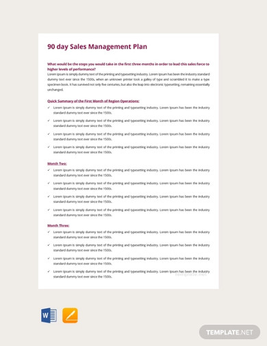 free 90 days sales management plan template