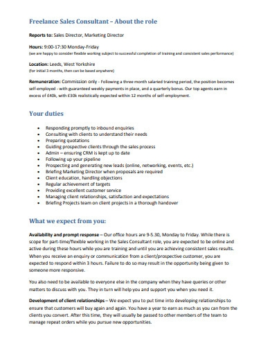 freelance sales consultant example