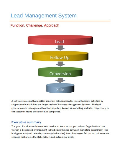 lead management system example