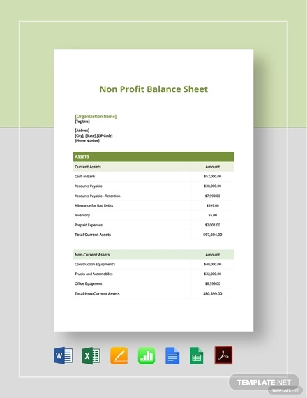 Non Profit Financial Statement Template Excel from images.examples.com