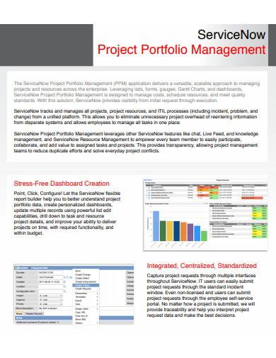 project portfolio management example