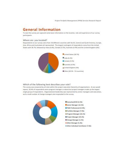 project portfolio management service search report