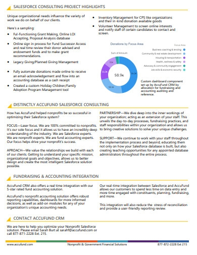 sales force consulting project highlights