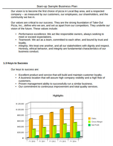 sample start up business sales plan