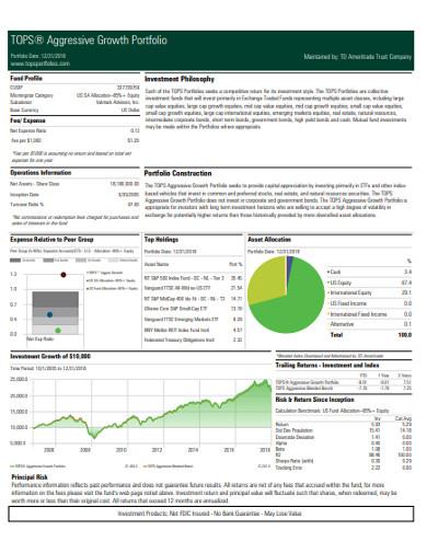 aggressive growth portfolio example