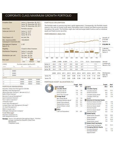 corporate growth portfolio example