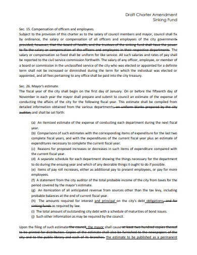 draft charter amendment sniking fund