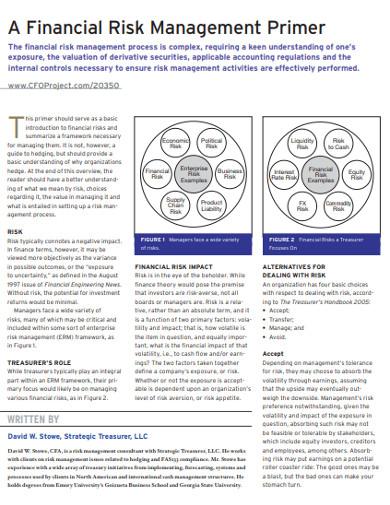 financial risk management primer example