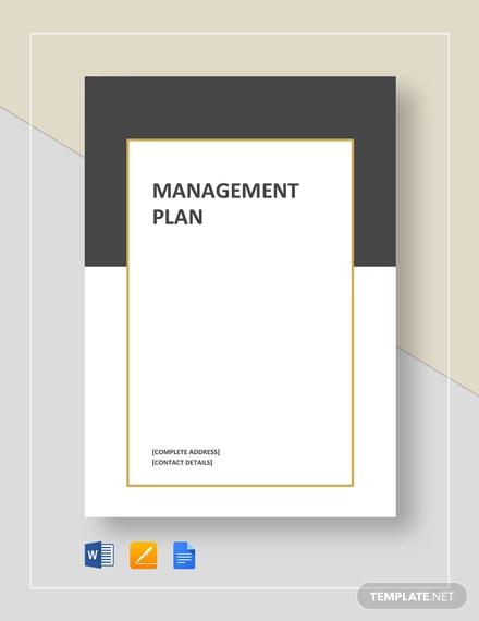 management plan template