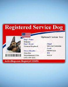 registry identification card