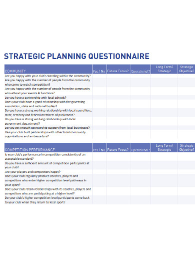 sample strategic planing questionnaire example
