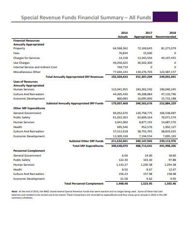 special revenue funds financial report