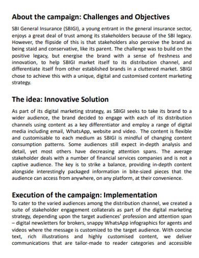 standard digital marketing campaign in pdf