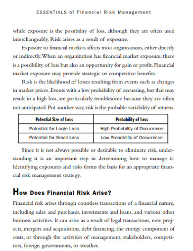 standard financial risk management example