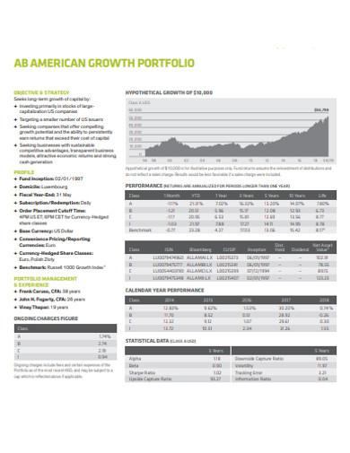 standard growth portfolio example