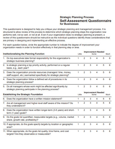 strategic planing self assessment questionnaire