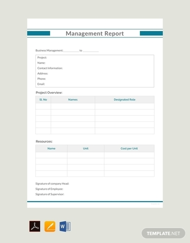 management report example