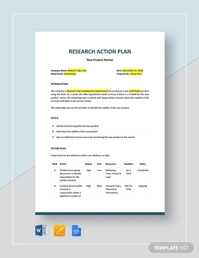 nursing research action plan template