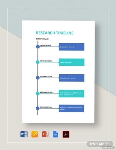nursing research timeline template